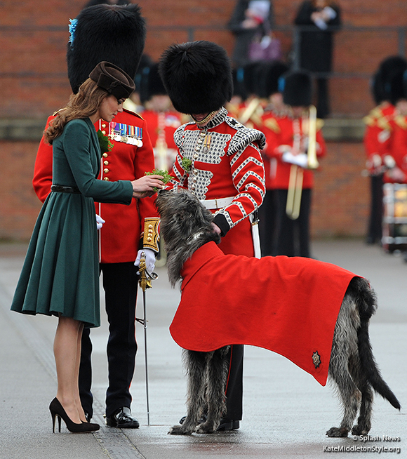Conmeal, the Irish Guard's official mascot