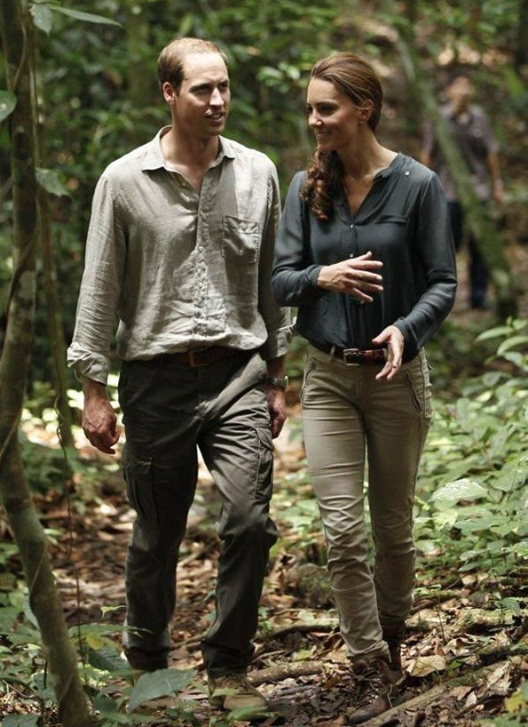 will kate rainforest