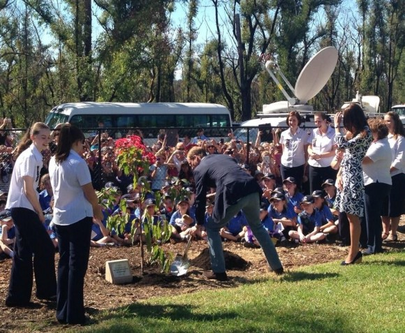 William and Kate planting a tree.  Emily Andrews, The Sun.  Via What Kate Wore