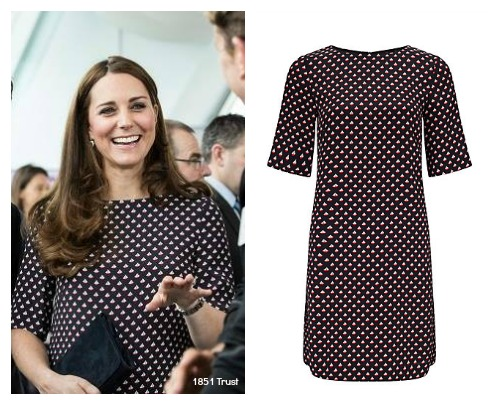 Kate's Boat Print Dress