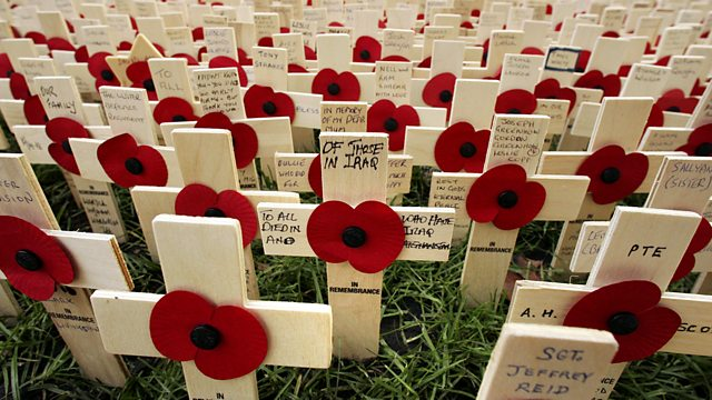 Royal British Legion Poppies