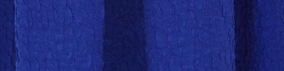 Saloni Martine dress fabric