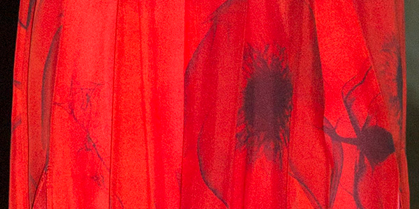 Poppy print detail