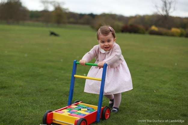 Princess Charlotte's first birthday photos