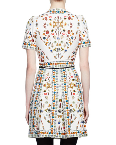 Alexander McQueen Obsession Print Dress - back