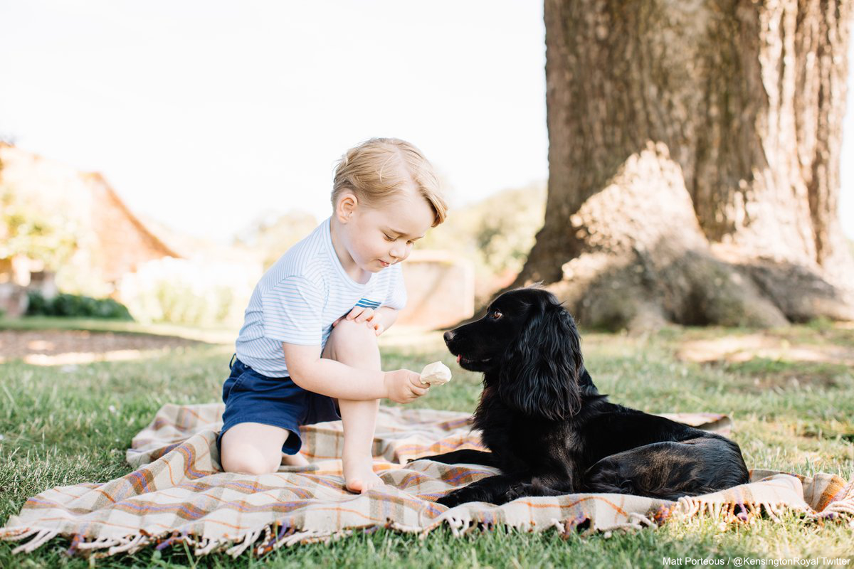 Prince George feeds ice cream to pet dog Lupo