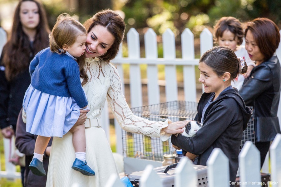 Princess Charlotte pets a bunny in Canada