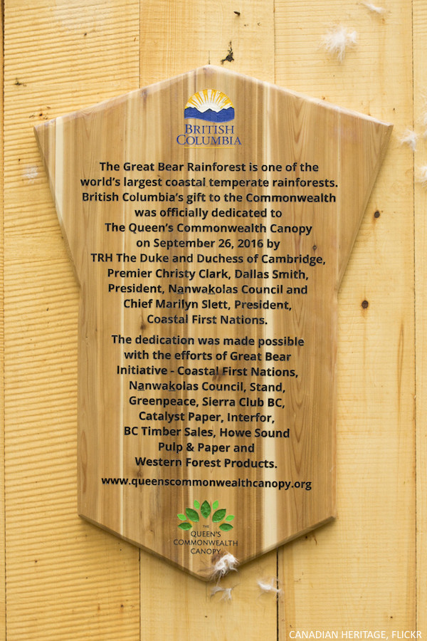 The plaque in Great Bear Rainforest