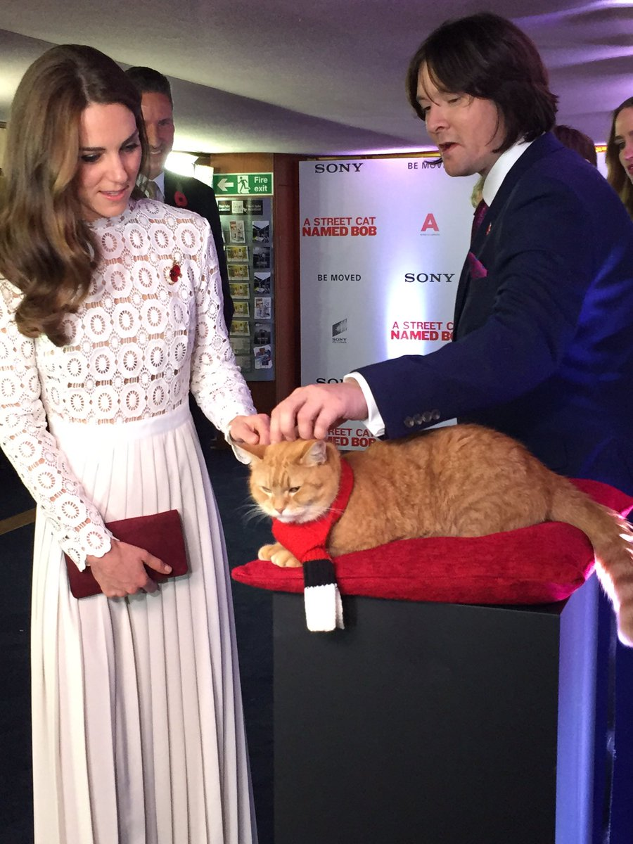 Kate Middleton stroking Street Cat Bob
