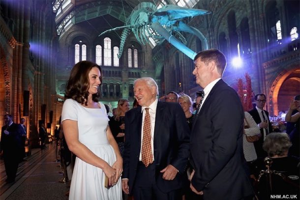 Kate with David Attenborough and the Director of the NHM at the whale unveiling