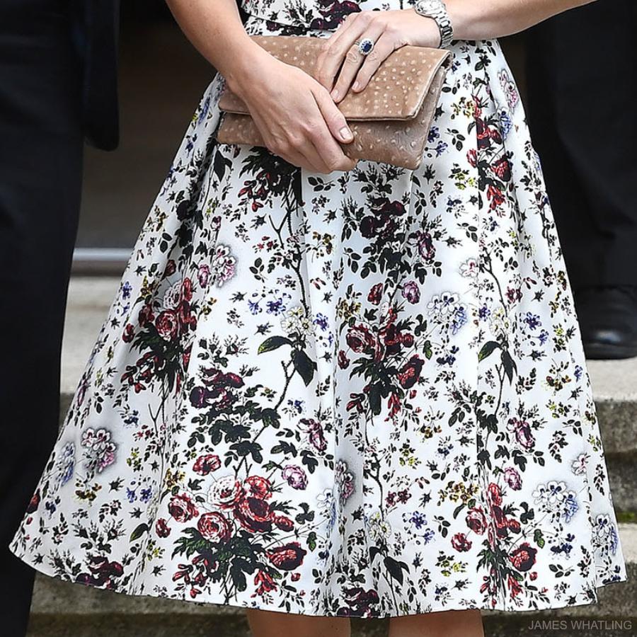 Erdem Imari Skirt