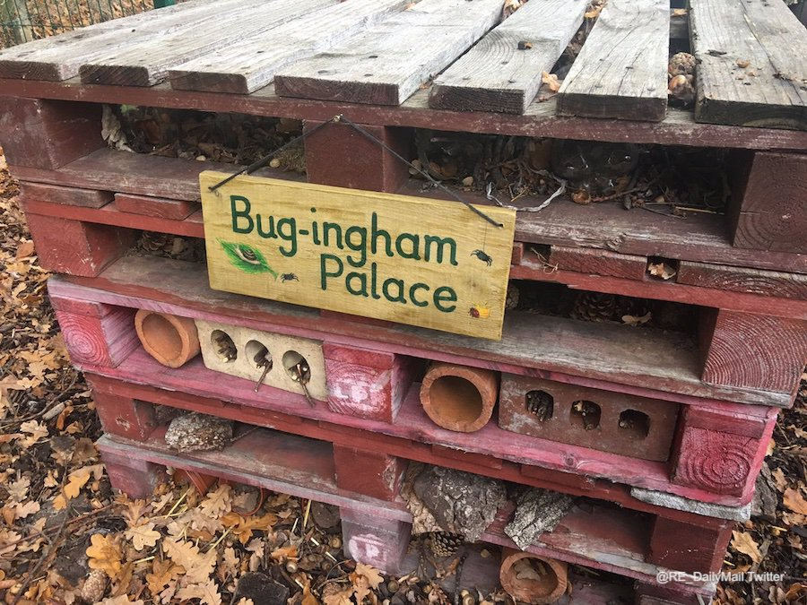 Bugingham-Palace