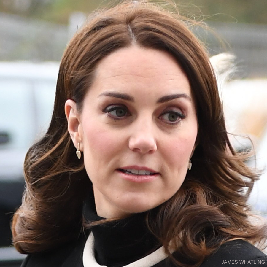 Kate Middleton wearing her Kiki McDonough Lauren Leaf earrings in Birmingham