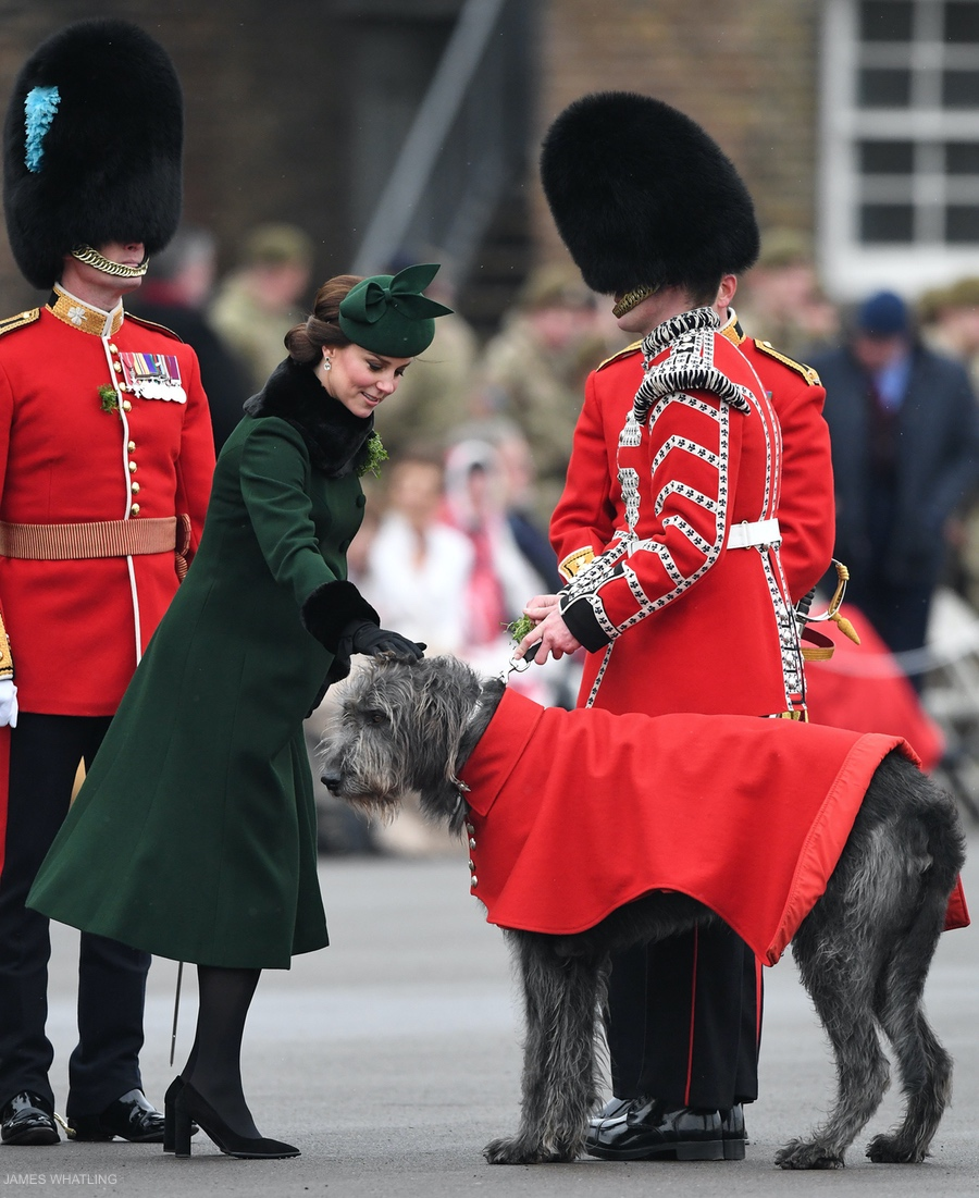 Kate Middleton with Domhnall the dog